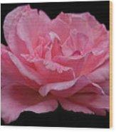 Rose - Flower Wood Print