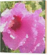 Rose Of Sharon In Abstract Wood Print