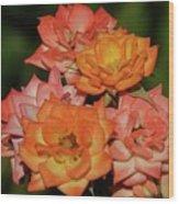 Pink And Orange Roses Wood Print