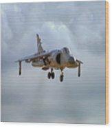 Royal Navy Sea Harrier. Wood Print