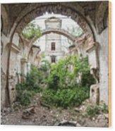 Ruins Of The Church Of St Wenceslas Wood Print