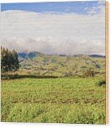 Rural Landscape Tanzania Wood Print