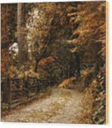Rural Road Wood Print