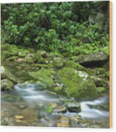 Rushing Mountain Stream Wood Print