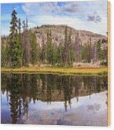 Ruth Lake Trail Wood Print