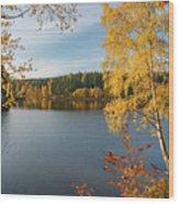 Saegemuellerteich, Harz Wood Print