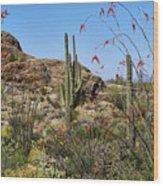 Saguaro National Park East Scene Iv Wood Print