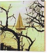 Sailboat Golden Sunset Wood Print