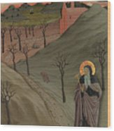 Saint Anthony The Abbot In The Wilderness Wood Print