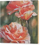 Salmon Colored Roses Wood Print by Sharon Freeman
