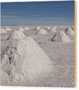 Salt Production Wood Print