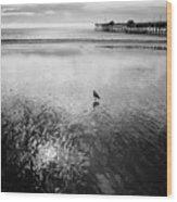 San Clemente Pier Wood Print by G Wigler
