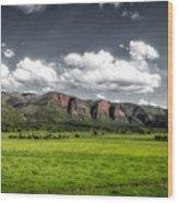 San Juan Mountains Of Colorado Wood Print
