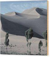 Sand Dunes In The Gobi Desert Wood Print