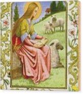 Sandersonruth Saints25 Sj Ruth Sanderson Wood Print