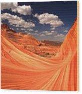 Sandstone Wave Curl Wood Print