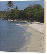 Sanibel Island Lagoon Wood Print