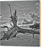 Sanibel Sunrise Wood Print