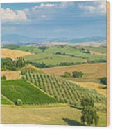 Scenic Tuscany Landscape At Sunset, Val D'orcia, Italy Wood Print