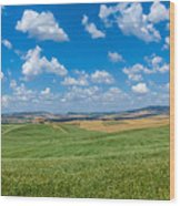 Scenic Tuscany Landscape With Rolling Hills In Val D'orcia, Ital Wood Print