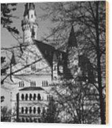 Schloss Neuschwanstein Wood Print