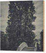 Schwetzingen Castle Park Wood Print