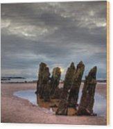 Scottish Coast Wood Print