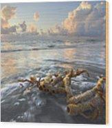 Sea Jewel Wood Print