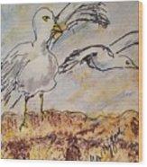 Seagull Salute Wood Print