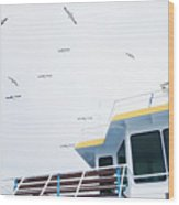 Seagulls Over Ferry Boat Wood Print
