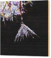 Secrets Of Nature Wood Print