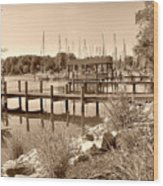 Sepia Waterscape Wood Print