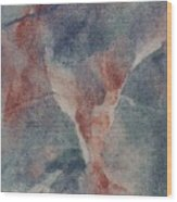 Ser.1 #10 Wood Print