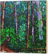 Sewp 6 15 Wood Print