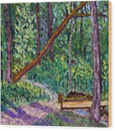 Sewp Trail Bridge Wood Print