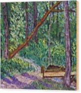 SEWP Trail Bridge Wood Print