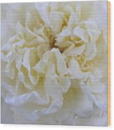 Shabby Chic Wood Print