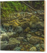 Shackleford Falls Wood Print
