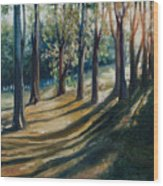 Shadows Wood Print