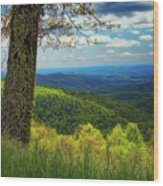Shenandoah Valley Np Wood Print