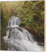 Shepperd's Dell Falls Wood Print
