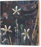 Sierra Wildflowers Wood Print