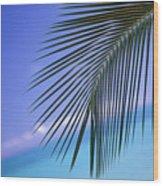 Single Palm Frond Wood Print