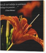 Single Tiger Lily Poster Wood Print