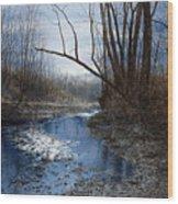 Skippack Blues Wood Print