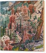 Skunk Creek Trailhead At Bryce Wood Print