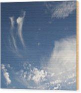 Sky Dance Wood Print