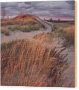Sleeping Bear Dunes National Lakeshore Wood Print