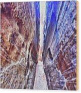 Slot Canyon Of Canyon De Chelly, Wood Print