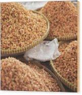 Small Asian Dried Shrimp In Kep Market Cambodia Wood Print